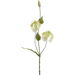 Spray -Gloriosa- plastic 54cm cream